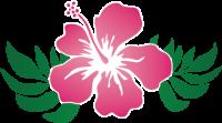 003_hibiscus_01
